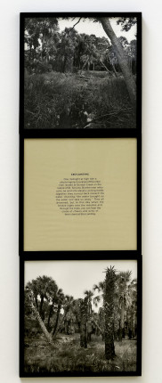 """Carrie Mae Weems Detail, Ebo Landing. 1992. Edition EP of 10, 2 APs. Two silver gelatin prints and one screen print text panel. 60"""" x 20"""" installed. © Carrie Mae Weems. Courtesy of the artist and Jack Shainman Gallery, New York. Image courtesy of the Gund Gallery and Mike Reilly."""